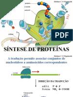 Síntese de proteinas