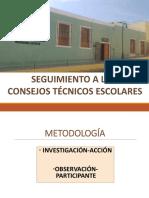 Seguimiento Consejos Tecnicos -Formato 2