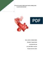 Manejo de La Diverticulitis Aguda Complicada Según Correlación Clasificación Hinchey Copia.docx