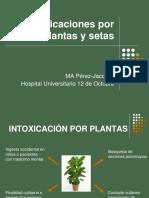 Intoxicaciones por Plantas y Setas 2