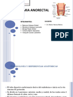 Anatomia AnorrectaL