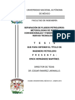 Tesis Licenciatura Erick Hernandez Martinez Ing Petrolera