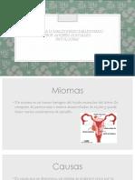 patologias sistema femenino