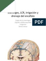 Meninges, LCR, irrigación y drenaje.pdf