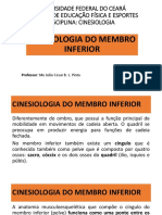 Cinesiologia Do Membro Inferior