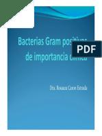 Bacteriass Gram Positivos de Importancia Clínica Clase5
