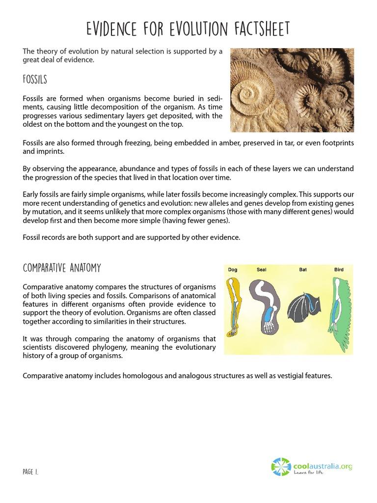 evidence-for-evolution-factsheet-v2 | Homology (Biology) | Evolution