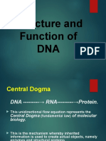 Structure and Function of DNA..