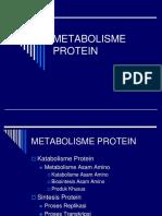 METABOLISME_PROTEIN+AS.AMINO