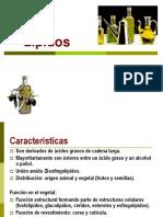 6.Lipidos.pdf
