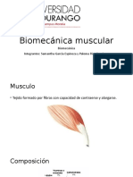 Biomecánica muscular