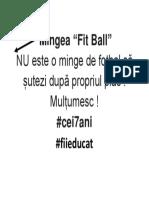 Mingea Fit Ball
