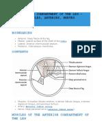 Anterior Compartment of Leg
