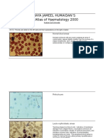 Color Atlas of Haematology 2000