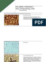 Color Atlas of Haematology 2000