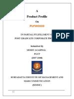 Company Report.docx