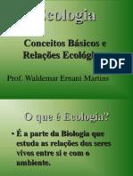 Ecologia-Relacoes Ecologicas-ciclos