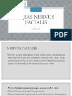 Jaras Nervus Facialis