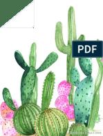 Cactus 2nd Crop