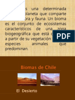 14.- Biomas y sucesión ecologica 2014.pptx