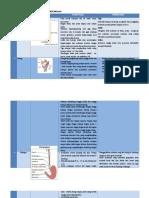 tabel anatomi fisiologi.docx
