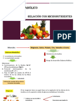 Sindrome Metabolico and Micronutrientes