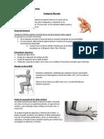 Evaluación Muscular.docx