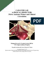 1. Cadaver Lab Anatomy Primer Updated 4 2014