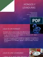 refor 1.pptx