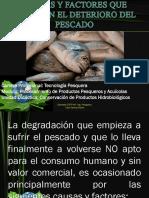 CAUSAS Y FACTORES QUE ORIGINAN EL DETERIORO DEL pescado.pptx