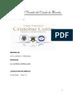 Acto Juridico y Personas 2012 2013