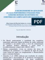 Aline Gomes Da Silva Dos Santos (1)