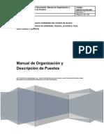 Manual de Organización y Descripción de Puestos_0