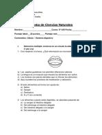 3º evaluacion 5