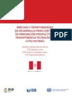 Brechas y Oportunidades de Desarrollo Para CITE ONUDI 2016