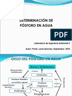Determinacion de Fosforo en Agua (1)