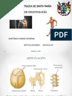 Articulacion Del Cuerpo