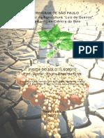 Apostila de Física do Solo.pdf