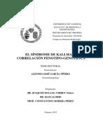 El Síndrome de Kallmann Alfonso García Piñero