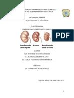 enfermedades gastrointestinales