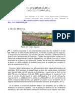 342482517-Caso-Cultivos-Sayonara.pdf