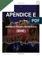 Apendice E BHE