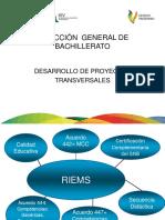 Desarrollo de Proyectos Transversales (1)