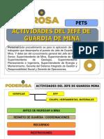 PETS-Actividades de Jefe Guardia Mina