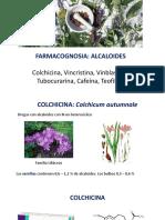 alcaloides 2
