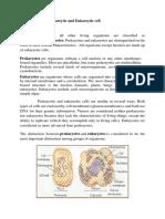 Prokaroytic and Eukaroytic Cell