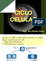 8. Ciclo Celular