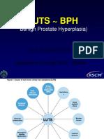 BPH , PDUI 2017.pdf