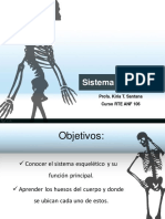 sistema esqueletal anf106 pdf