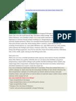 artikel pertanian.docx